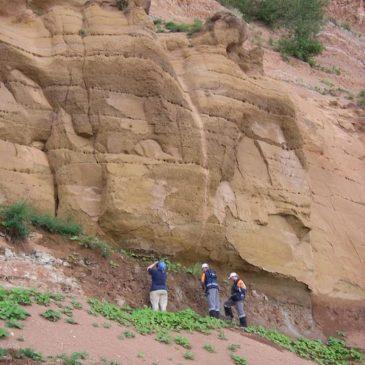 Палеонтологи мира на Вологодчине