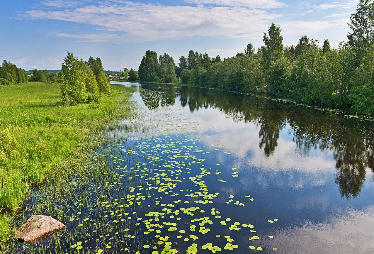Марафон по очистке водоемов пройдет в Вологде