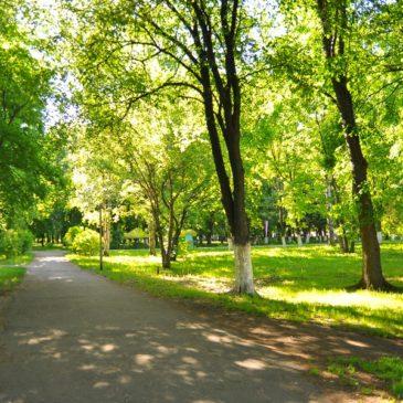 ШКОЛЬНИКИ спроектируют шесть зеленых зон Вологды