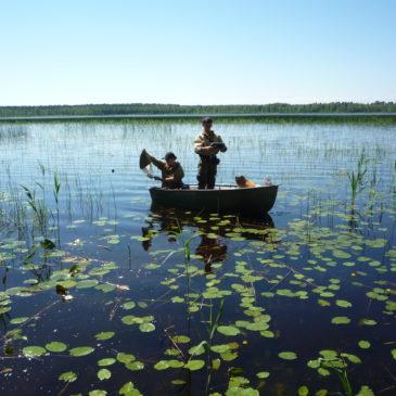 РГО исследует озера Вологодчины