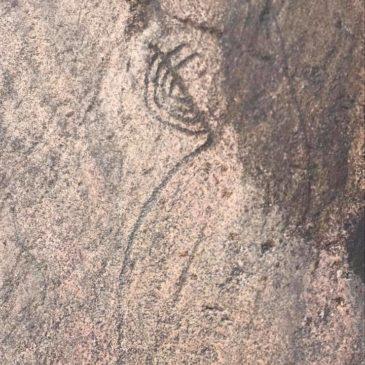 ДРЕВНЕЙШАЯ ЖИВОПИСЬ ОНЕГО – наскальные рисунки мыса Бесов нос