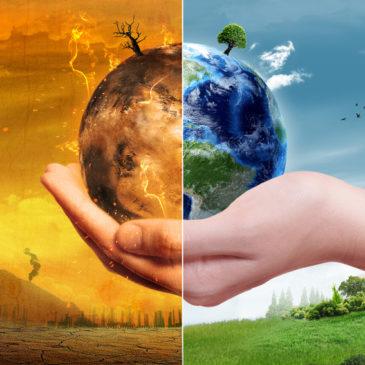 РЕГИОНАЛЬНЫЙ ОПЕРАТОР по обращению с отходами подписал соглашение с экологами