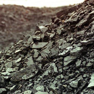 Ископаемому углю в природе и мировой литературе будет посвящена новая  встреча проекта «Литературная минералогия» в Вологде.