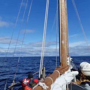 """Третий экипаж экспедиции """"Вместе по Русскому Северу"""" побывал на островах Валаам и Хейнясенмаа на Ладоге."""