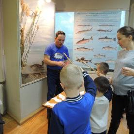 «Международный день защиты животных» состоялся в Вологодском музее-заповеднике.