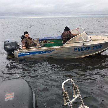 Обследование рыбопромысловых участков Онежского озера прошло при участии комиссии Вологодского отделения РГО.