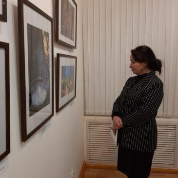 """В Вологде в рамках национального проекта """"Культура""""проходит выставка «Многоликая Арктика»."""
