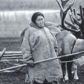 Ученые из Вологды пройдут по следам кочевников-номадов и крестьян Русского Севера.