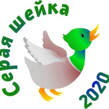Вологодское отделение Союза охраны птиц России приглашает принять участие в учёте зимующих водоплавающих птиц.