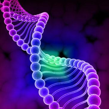 Дом научной коллаборации приглашает школьников на web-квест «Расшифруй ДНК- 2020».