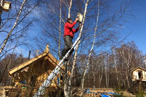 На самоизоляции путешественник Фёдор Конюхов смастерил 300 деревянных скворечников.
