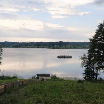В рамках гранта ВРО РГО продолжаются исследования озер таежной зоны на Вологодчине.