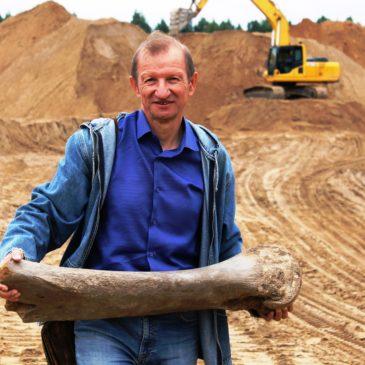 """Берцовую кость мамонта нашли в карьере по добыче песка """"Сухонский"""" в Сокольском районе Вологодской области."""