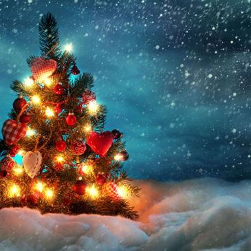 Вологодское отделение РГО поздравляет всех с Новым годом и Рождеством