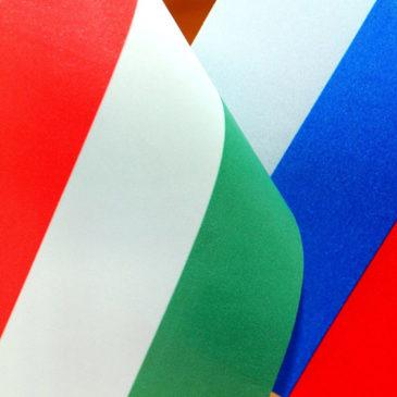 Участники российско-венгерского проекта обсудят календарь совместных патриотических, экологических, туристических мероприятий