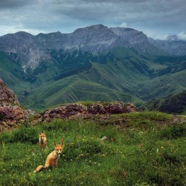 """Прием работ на фотоконкурс РГО """"Самая красивая страна"""" завершится 5 апреля 2021 года"""