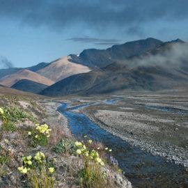 Открыта регистрация на Международную конференцию ЮНЕСКО по большим рекам мира