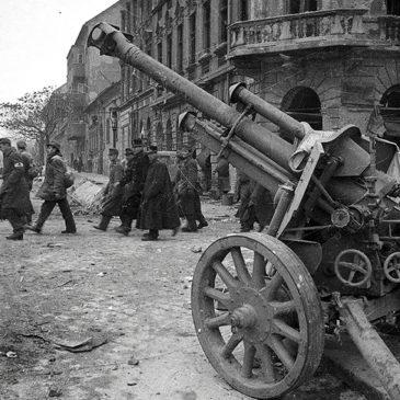 29 человек из Вытегорского района погибли при освобождении Венгрии от фашистов в 1945 году
